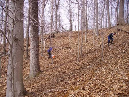 Orienteers make their way from a control point across a hillside.  (Photo by Petr Hartman)