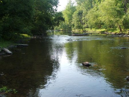 Tohickon Creek is one the cleanest streams in the state.